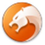 獵豹安全瀏覽器正式版下載