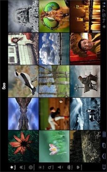 专业摄影师图片社区500px最新版专业摄影师图片社区500px下载
