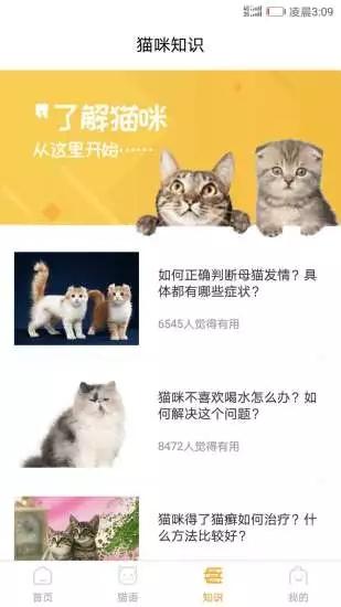 猫咪翻译器破解版