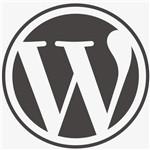wordpress主题电脑版