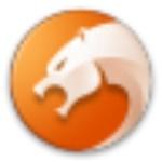 猎豹安全浏览器pc端