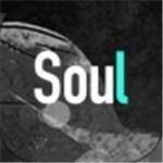 Soul金币破解版