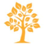家谱树制作工具绿色版
