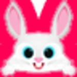 小飞兔整站破解版下载