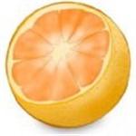 银杏果视频app免费版下载