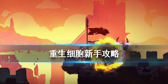 /news/73758.html