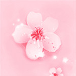 樱花直播下载app最新版