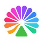 大麦app最新版本