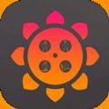 向日葵app下载汅api免费安卓版