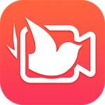 飞鸽影视app最新版下载
