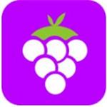 紫葡萄直播最新版软件下载