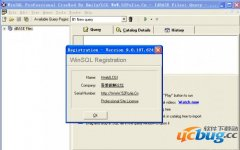 WinSQL Professional(数据库管理工具)v9.0.107.624破解版