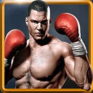 真实拳击修改版v1.9.5无限金币版(带数据包)
