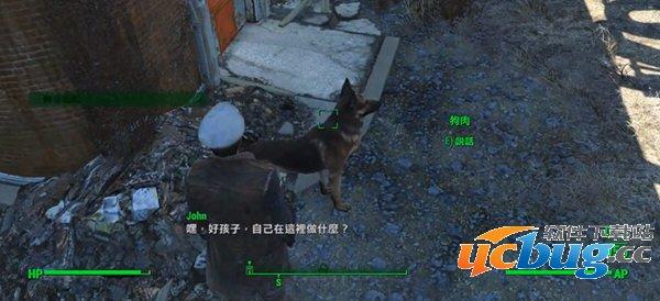 辐射4狗肉