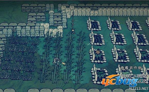 《饥荒》海滩DLC积水问题怎么解决?