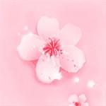 桃花視頻app v3.2.1