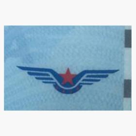 飞机驾照生成器APP下载V1.0安卓版