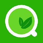 绿茶浏览器软件
