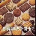 你算哪块小饼干表情包9P下载